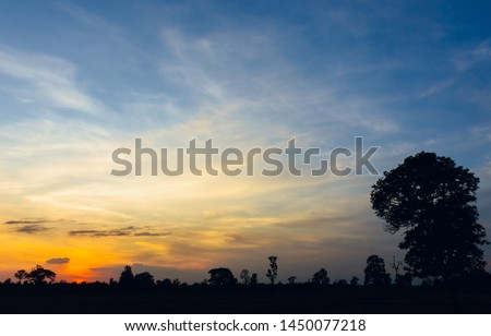 The beautiful landscape of the sunset with the silhouette of trees in the forest and fields. #1450077218
