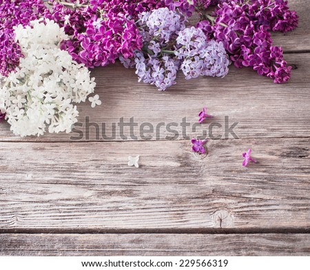 The beautiful lilac on a wooden background #229566319