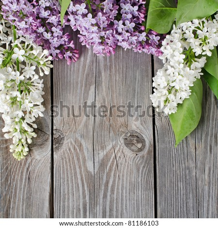 The beautiful lilac on a wooden surface #81186103