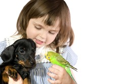 The beautiful little girl holds Parrot and dog on white background close up