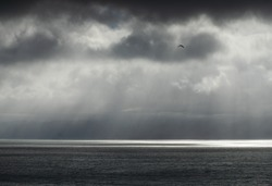 the beautiful ocean in Newzealand with lightrays coming through the clouds