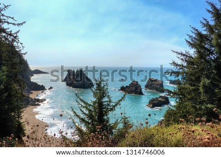 The beautiful Secret Beach in Samuel H. Boardman State Scenic Corridor. After a short hike, you arrive at this hidden amazing peaceful beach. Samuel H. Boardman, Oregon, USA. #1314746006