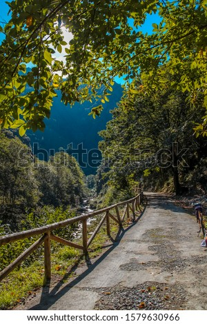 The beautiful trail on the bear trail in Asturias