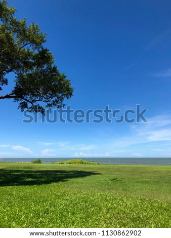The beautiful view of sea, beach grass garden , tree and blue sky in the best relax holiday at Phetchaburi, Thailand.