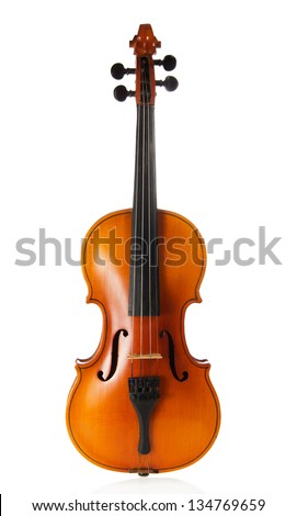 The beautiful wooden violin isolated on white