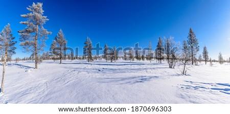 the beauty of lapland, Pallas Tunturi, Lappland, Finland Stock foto ©