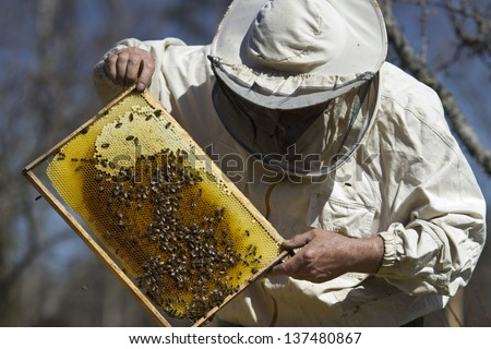the beekeeper has control over a framework with honey