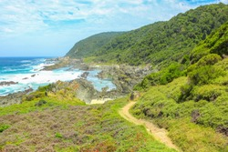 The beginning of the path to waterfall along the popular Otter trail in the Tsitsikamma National Park, Eastern Cape, on the Garden Route in South Africa. Aerial view from parking.