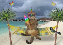 The beige caticorn in heart shaped sunglasses is eating rainbow ice cream in a hammock that hanging between palm trees. A bird is sitting next to him. Butterflies fly near him.