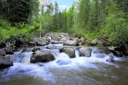 The big mountain river flows down on big stones through the wood
