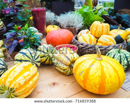 the big orange pumpkin and the other pumpkins in the hay, country style, fair harvest in the fall #716859388