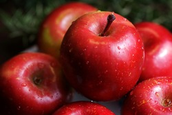 The big red apples