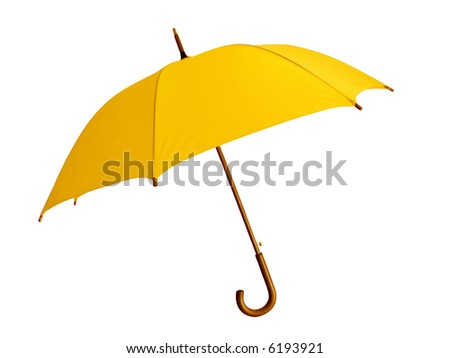 The big yellow umbrella