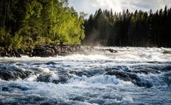 The biggest and strongest rapids in the north region (Storforsen, Sweden)