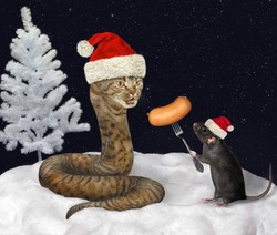 The black rat in a red Santa Claus hat is feeding the beige cat snake with sausage in the winter wood at night.