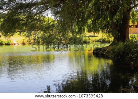 Shutterstock The Blanco River at Blanco state park in the Texas Hill Country