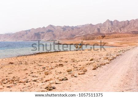 The blue hole in Dahab, Egypt. Africa.