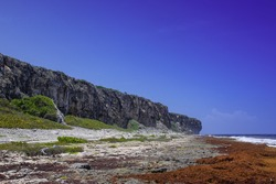 The bluff on Cayman Brac in the Cayman Islands. This limestone formation is a popular tourist attraction. In this shot the beach is lines with sargassum