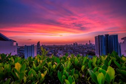 The blurred background of the rooftop garden, the condo, offers panoramic views of the city and the twilight sky.