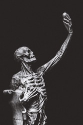 The body anatomy and skeletal illusions