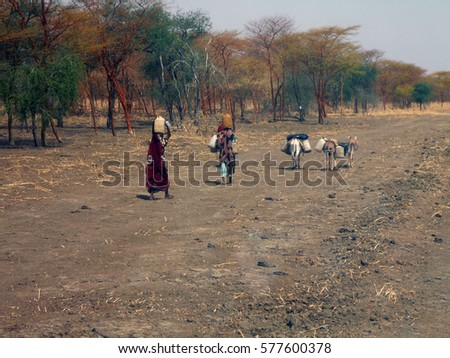 The border between North Sudan and South Sudan . Here, people live on the brink of survival. year 2014. Women are azhku water in earthen vessels #577600378