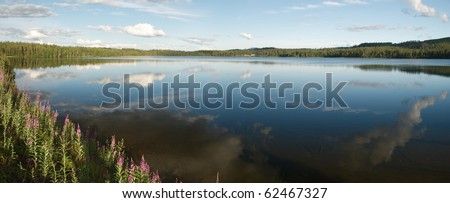 The border of Yli-Kitka lake in summer time is green and with many flowers, the sky and clowds are reflecting in water mirrow th bottom is seen thtough transparante water Photo stock ©