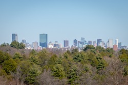 The Boston skyline from a hill in the Arnold Arboretum