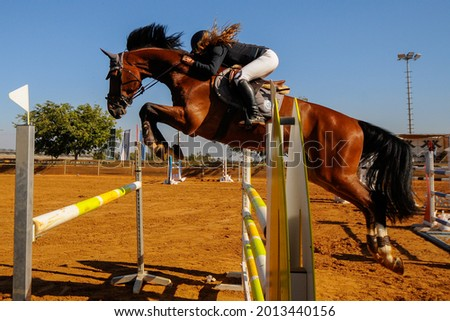 The bottom view on the rider on horse jumping over a hurdle during the equestrian event  Foto stock ©