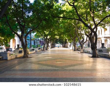 The boulevard of El Prado in Old Havana