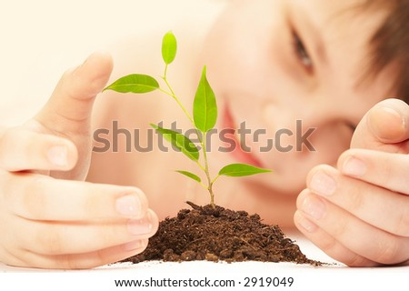 The boy observes cultivation of a young plant.