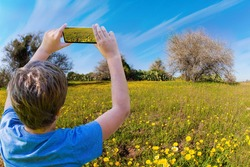 The boy takes pictures of flowers on a cell phone. Negev desert. Fields of flowers in the bright southern sun. Lovely warm day. Israel.