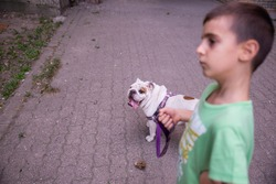 The boy who took his dog for a walk