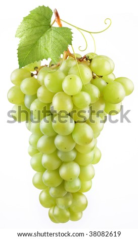 The branch of yellow grapes with leaves on white background