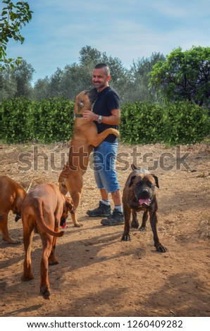 Boerboel and puppy Images and Stock Photos - Page: 2