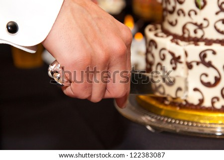 The bride and groom cut the cake together showing their hands and the beautiful wedding cake.
