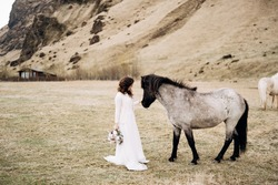 The bride in a white dress and a bouquet in her hands, stroking a horse with a black mane in the face, in a field of moss. Destination Iceland wedding photo session with Icelandic horses.