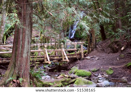 The bridge over Coal Creek next to the Falls, in the Tiger Mountain State Park, near Newcastle, Washington. - stock photo