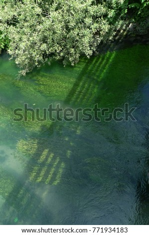 The bridge over the rapid river. Green, aquatic plants carried by the flow. The banks of the river covered with dense vegetation. Powerful water currents create  wave. The shadow of the bridge cuts th Photo stock ©