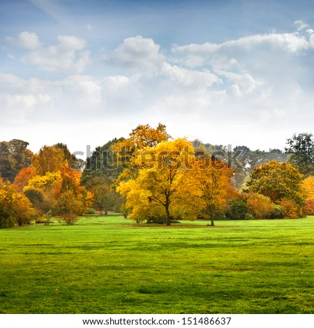 The bright colors of autumn trees. Autumn landscape. #151486637