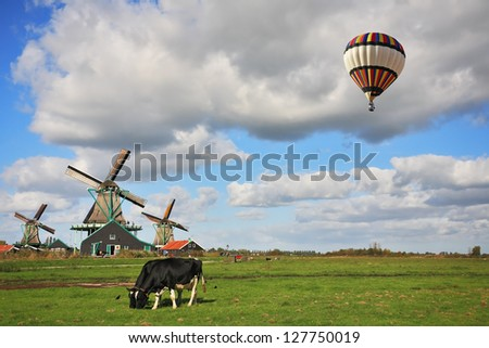 The bright striped balloon flies over the flat plain on which corpulent cows are grazed