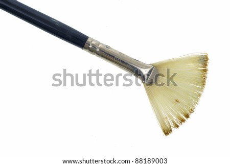 The bristles of a used fan shaped artist brush on a white background.