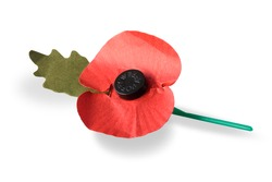The British Legion organises a fund-raising drive each year in the weeks before Remembrance Sunday, during which artificial red poppies, meant to be worn on clothing, in return for a donation.