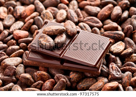 the brown chocolate and cocoa beans