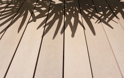 The brown wooden deck and black fade shadow of palm tree's leaf, shading on the house's terrace from tree's leaves in the garden