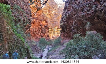 The Bungle Bungle, Purnululu National Park #1430814344