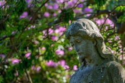 The bust of a statue of Mary and blurred pink flowering tree behind