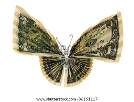 the butterfly money isolated white