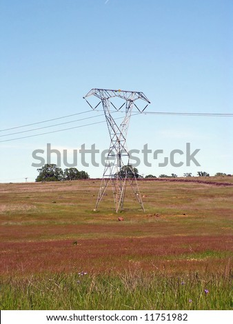 The California central valley. Fields of lush green grass, cat-tails, farmland, marsh and creeks. Electical towers.
