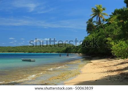 The calm waters of Seven Seas Beach near Fajardo, Puerto Rico
