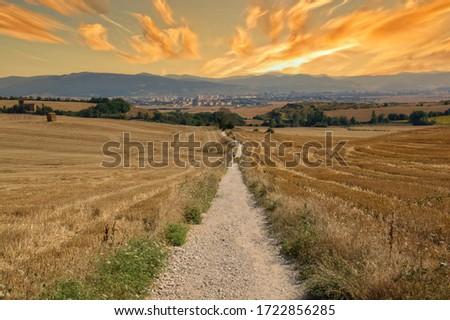 The Camino de Santiago during sunrise in Navarra, Spain Foto d'archivio ©